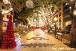 weihnachten-madeira