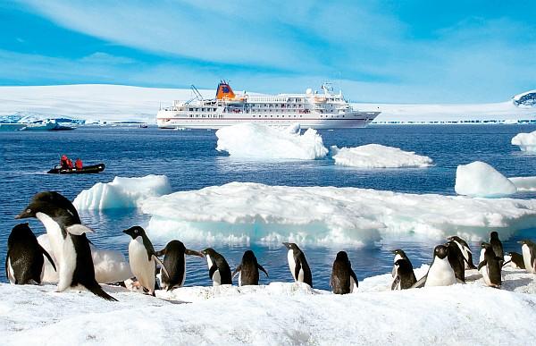 ms bremen antarktis