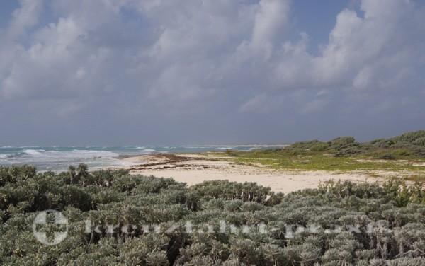 Cozumel Punta Sur Eco Park