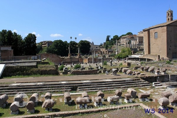 Rome - Roman Forum with the Curia