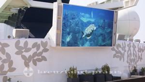 Rooftop Terrace Videoleinwand