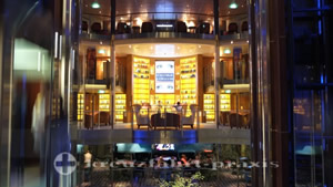 Celebrity Reflection - The Library