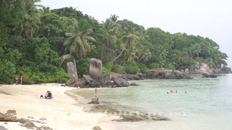 Strandabschnitt auf der Seychellen-Insel Mahé