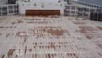 Queen Mary 2 - Genügend Raum für Deckspiele