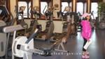 Queen Mary 2 - Sportstudio