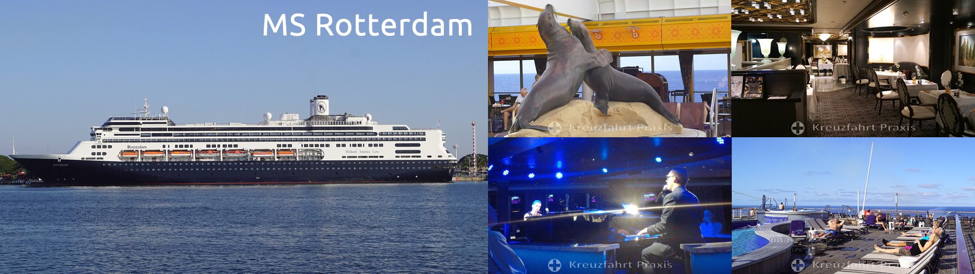 ms rotterdam kreuzfahrtschiff