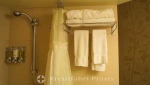 Vista Suite 6137 - wet room