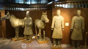 MS Rotterdam - Repliken der chinesischen Terrakotta Armee