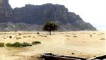 Ebene im Wadi Rum