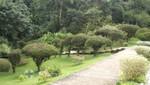 Puerto Plata - Die Parklandschaft des Pico Isabel de Torres