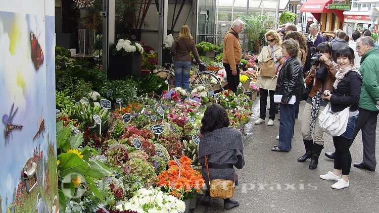 Bloemenmarkt am Singel