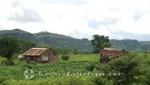 Madagaskar - Ackerland im Montagne des Francais-Reservat