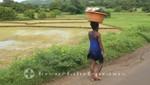 Madagaskar - Vor den Reisterrassen