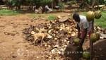 Madagaskar - Herstellung von Kokosprodukten