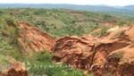 Madagaskar - Landschaft oberhalb der Tsingy Rouge