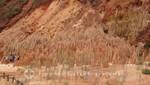 Madagaskar - Die Sandsteinnadeln der Tsingy Rouge