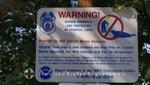 Warnung vor den Seelöwen