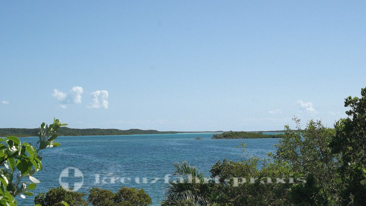 Bahamas - Half Moon Cay - Bonefish Lagoon