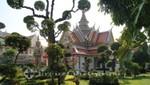 Formschnittbäume im Areal des Wat Arun-Tempels
