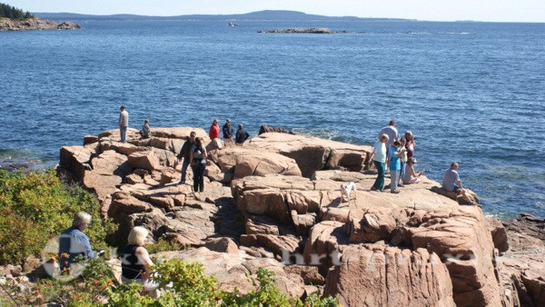 Acadia National Park - Klippenformationen Thunder Hole