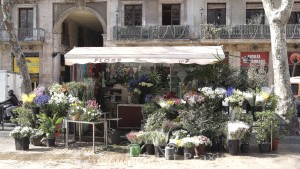 Barcelona - Blumenstand an der Rambla