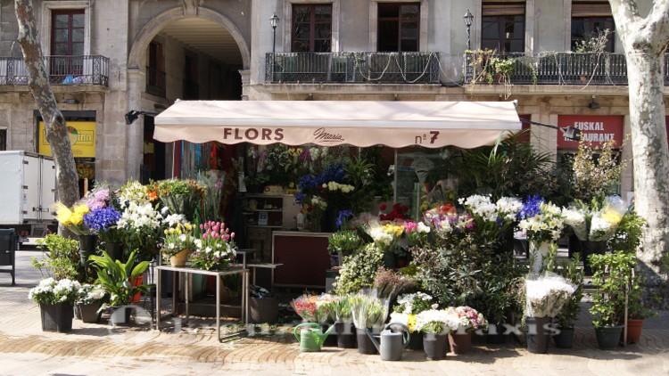 Barcelona - Flower stand on the Rambla
