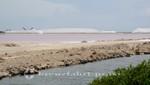 Bonaire - Die Salzwerke