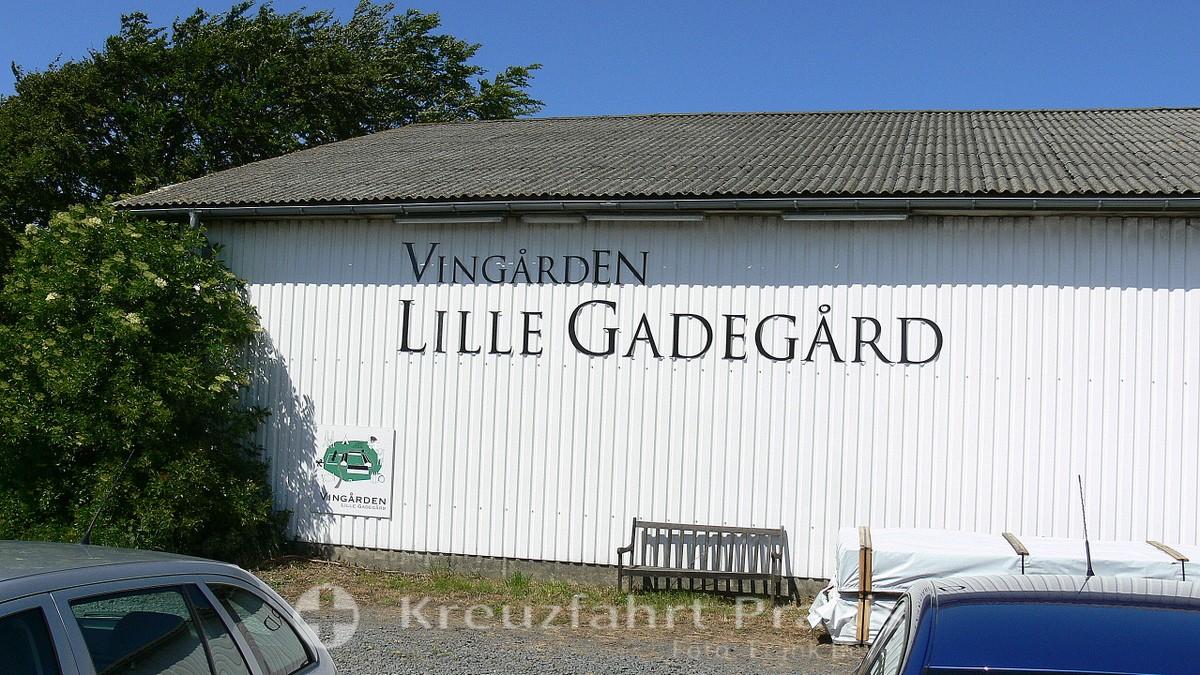 Bornholm - Vingården Lille Gadegård