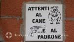 Capri - Wohlgefälliger Ratschlag