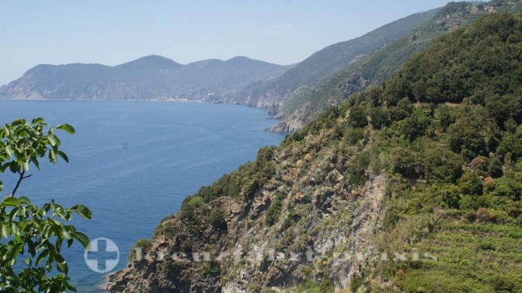 Panorama im Westen Corniglias