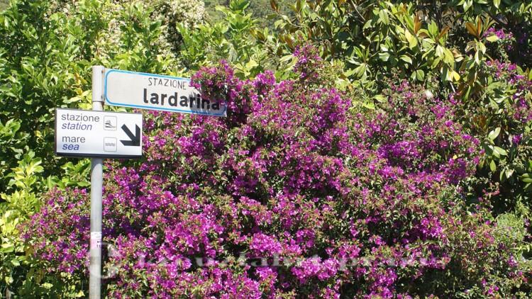 Cinque Terre -Corniglia - Einstieg in die Lardarina