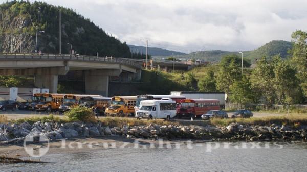 Corner Brook - Rundfahrtbusse warten auf Passagiere
