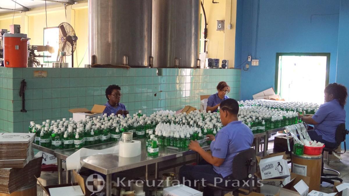 Chobolobo - Mitarbeiter verpacken Alcolado Glacial