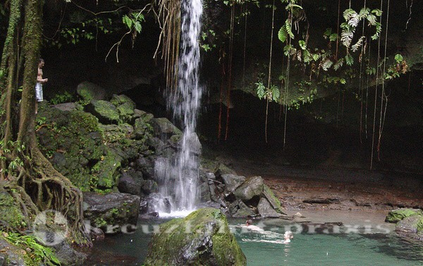 Dominica - Der Emerald Pool