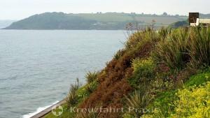 Falmouth - Blütenpracht auf 50° nördlicher Breite