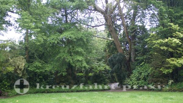 Falmouth - Gartenanlage
