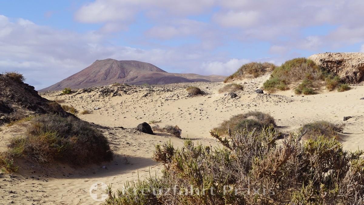 Mein Schiff 2 - Tag 4 - Fuerteventura