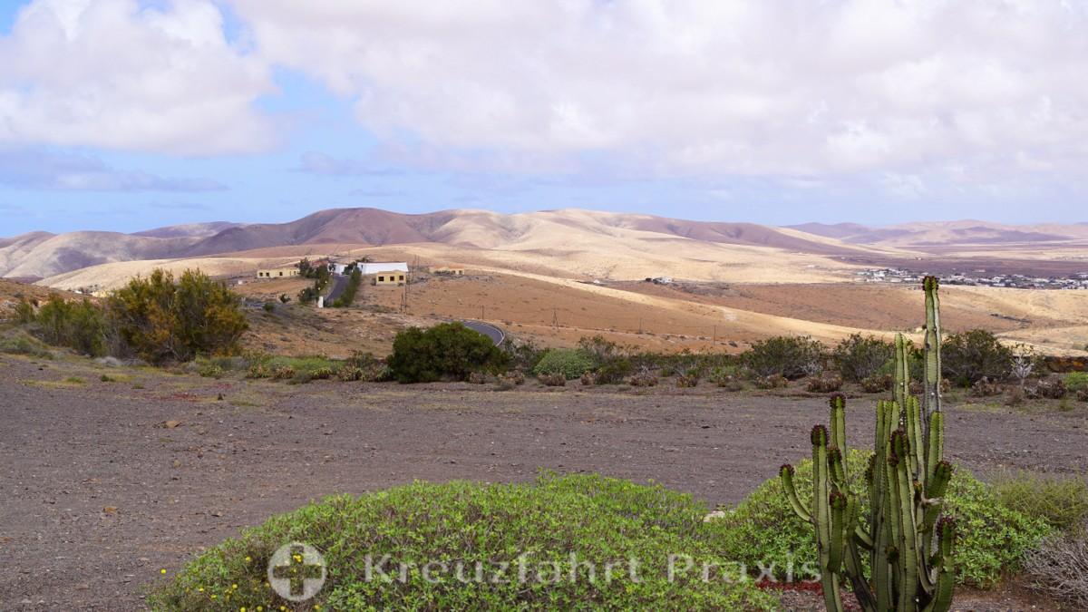 Fuerteventura - die Wüsteninsel