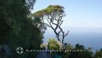 Nordafrika von Gibraltar aus gesehen
