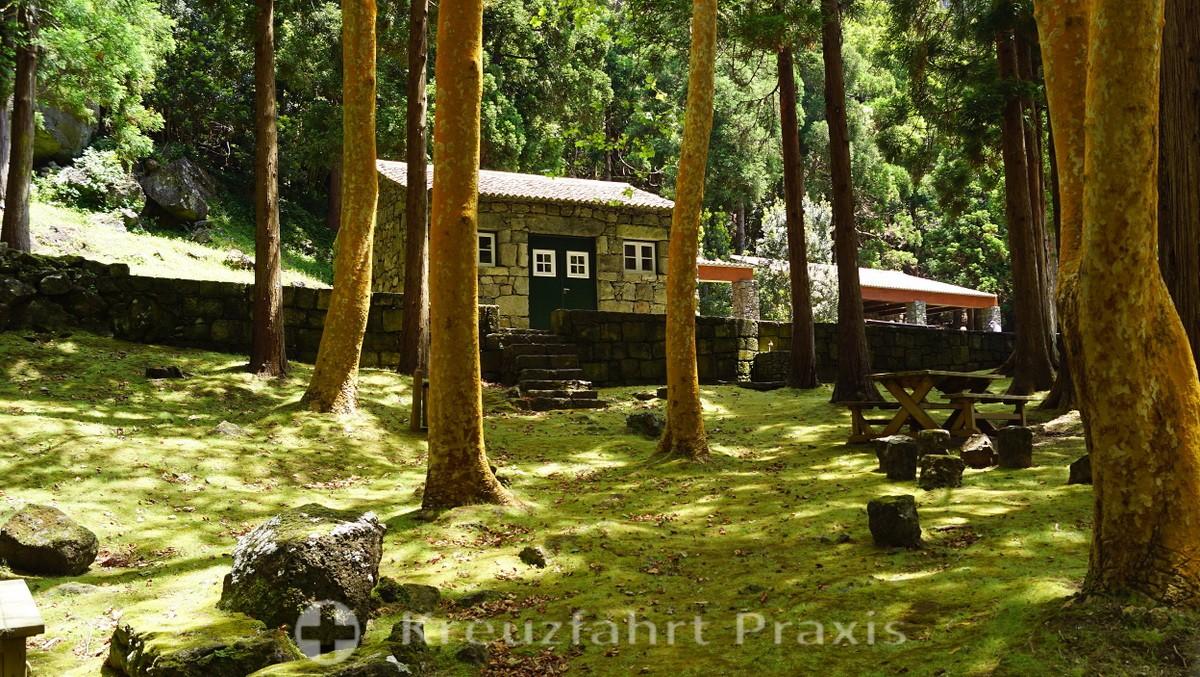 Caldeira of Graciosa - Parque Florestal
