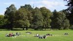 Sonniger Sonntag im Greenwich Park