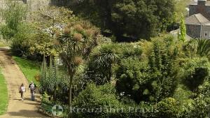 Subtropische Pflanzen in den Candie Gardens