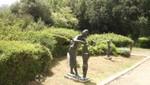 Haifa - Skulpturengarten