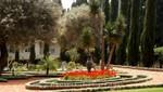 Haifa - Gartenanlagen im Bahai-Zentrum
