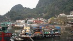 Fischerboote in Halong City