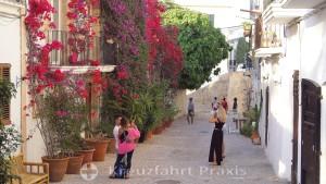 Bougainvillea in Ibizas Altstadt