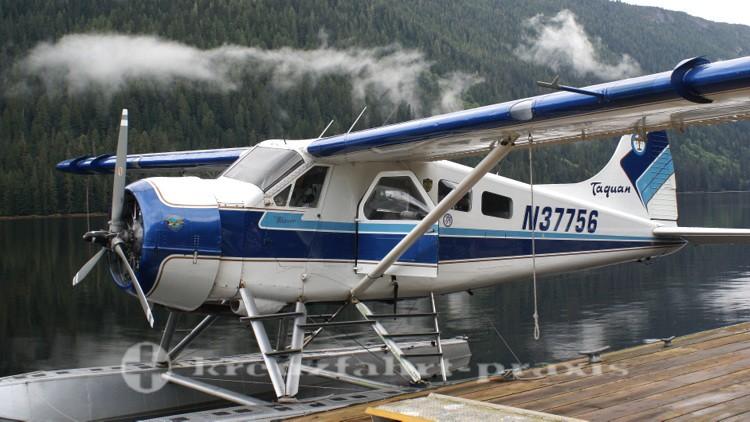 Die Beaver im Misty Fjord