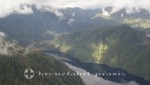So sieht der Seeadler den Tongass National Forest