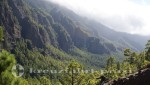 La Palma - Blick in das Tal