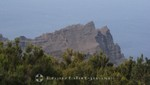 La Gomera - Garajonay Nationalpark